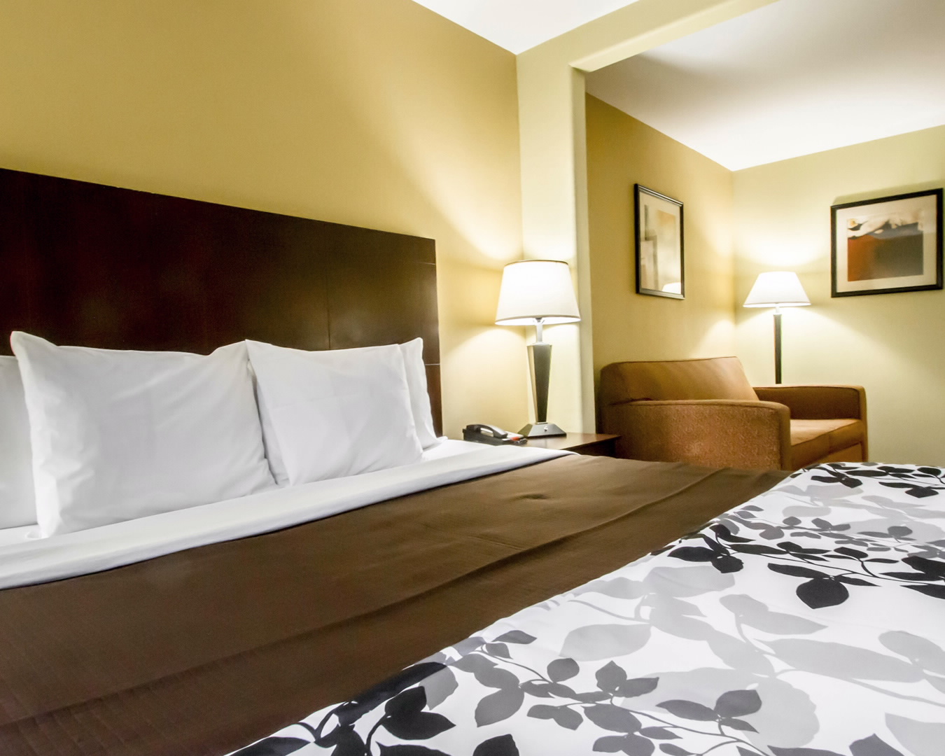 Sleep Inn & Suites Berwick-Morgan City